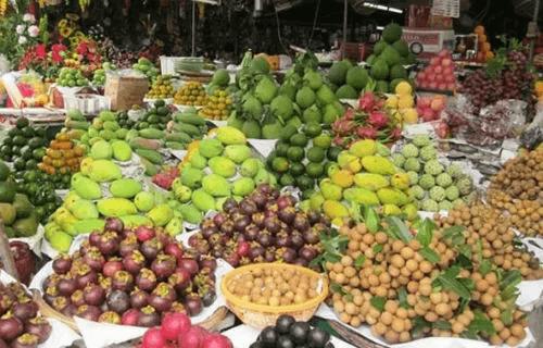 sản phẩm nông nghiệp việt nam